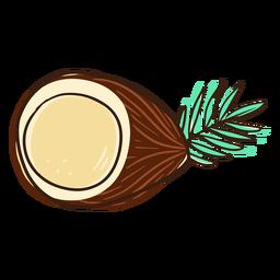 Meio coco Sarrabisco