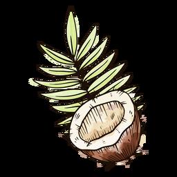 Half coconut watercolor