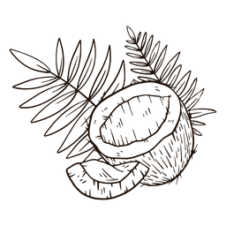 Medio coco con hojas dibujadas a mano