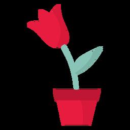 Flor en maceta plana