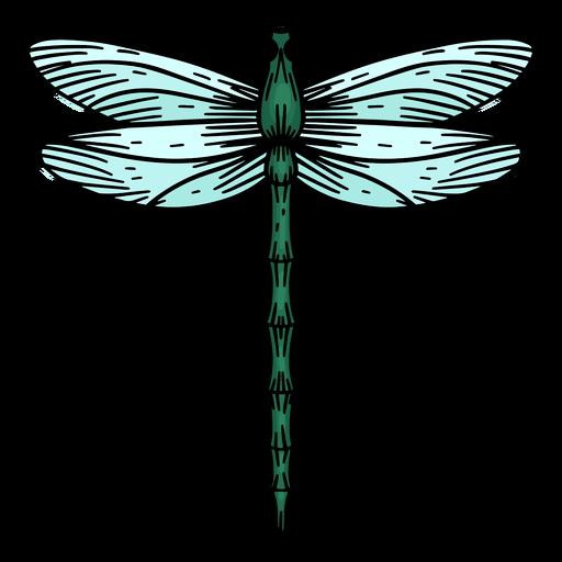 Hand drawn dragonfly