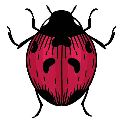 Hand drawn symbol ladybug