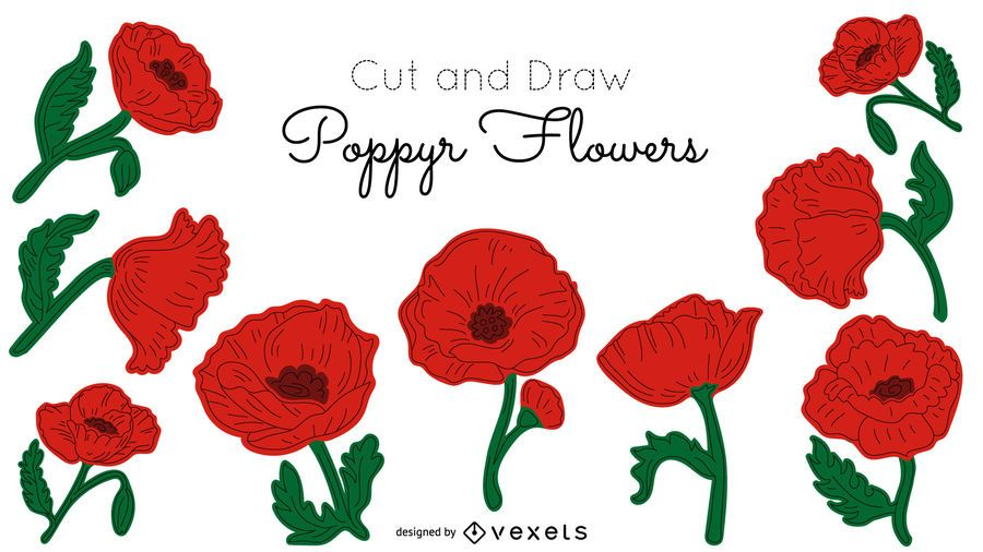 Poppy flowers illustration pack