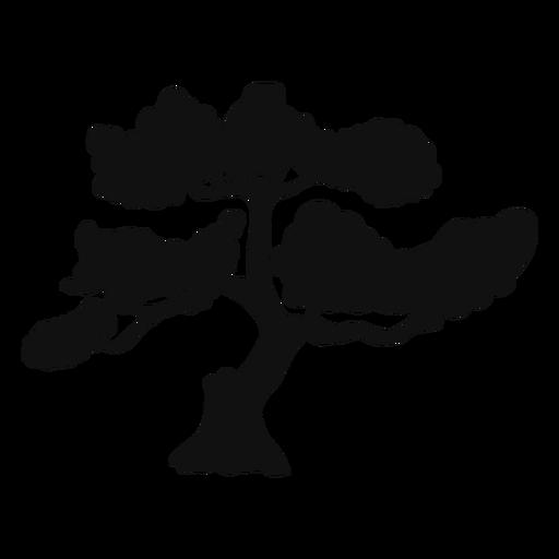 Silueta del árbol de los bonsais Transparent PNG