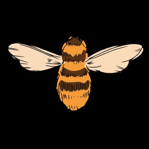 Bee illustration Transparent PNG