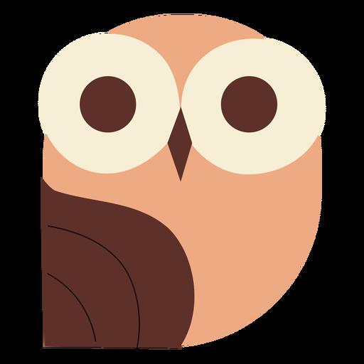 Big eyes owl flat Transparent PNG