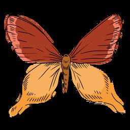 Mão de ilustração borboleta desenhada