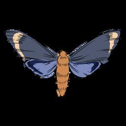 Ilustração de inseto voador