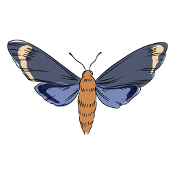 Ilustración de insectos voladores