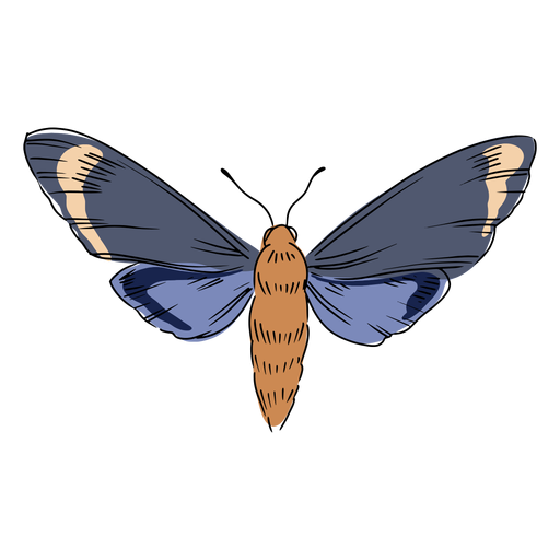 Flying insect illustration Transparent PNG