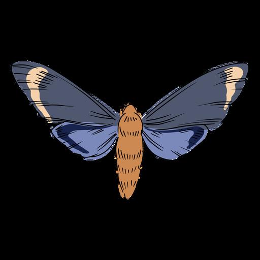Ilustración de insecto volador