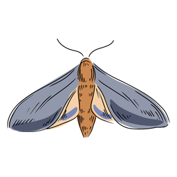Grey moth illustration