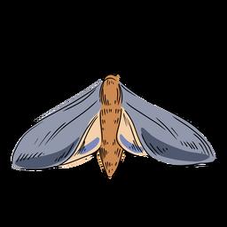 Ilustração de mariposa cinza