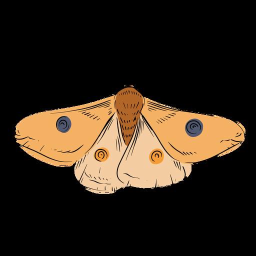 Moth illustration Transparent PNG