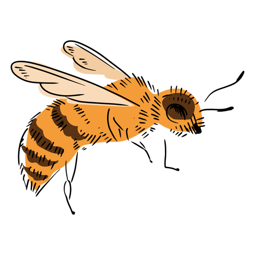 Side bee illustration
