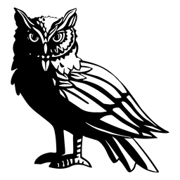 Black and white side owl