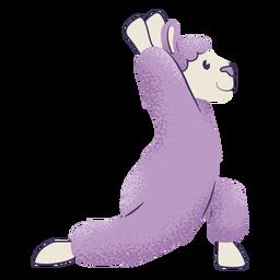Llama warrior pose yoga