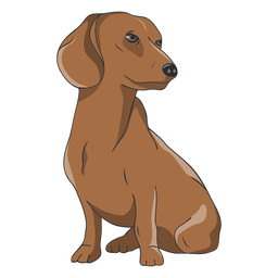 Dachshund dog illustration