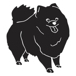 Pomeranian dog black