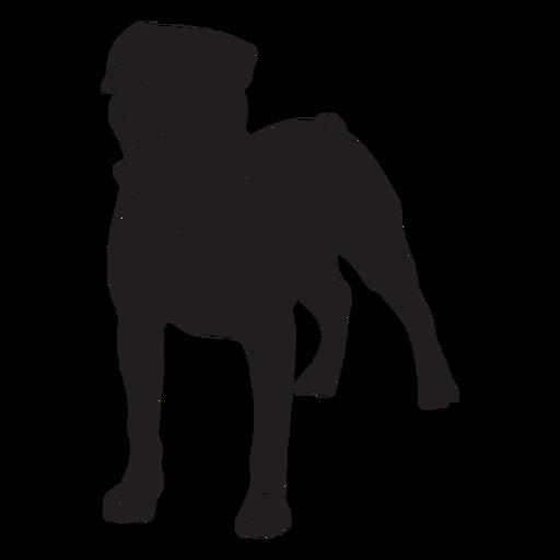 Perro Rottweiler negro Transparent PNG