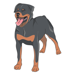Rottweiler dog illustration