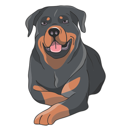 Rottweiler dog lying down illustration