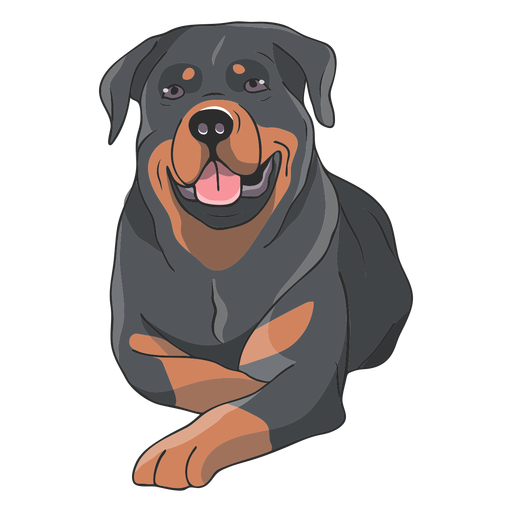 Rottweiler dog lying down illustration