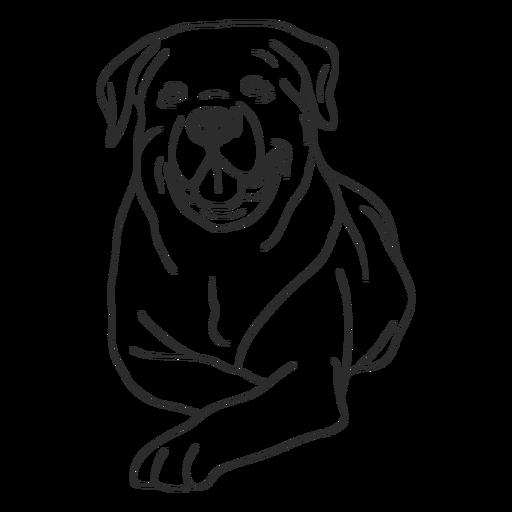 Perro Rottweiler acostado accidente cerebrovascular Transparent PNG