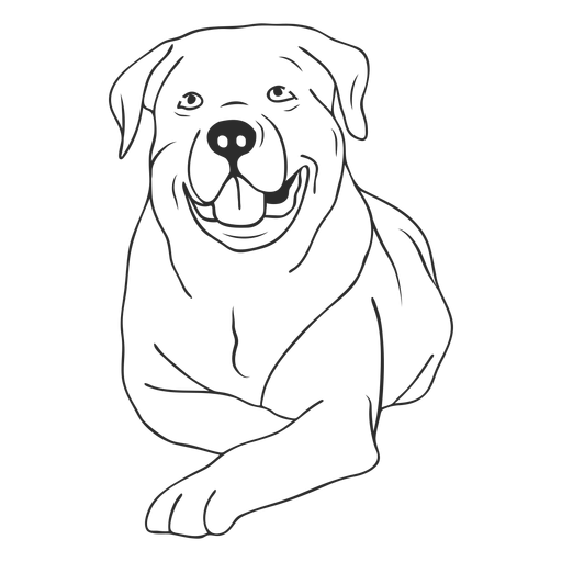 Rottweiler dog lying down stroke Transparent PNG