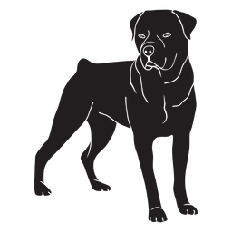 Rottweiler lado perro negro