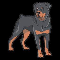 Ilustração de lado de cachorro rottweiler