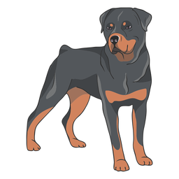 Rottweiler dog side illustration