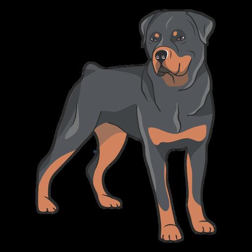 Rottweiler dog side illustration