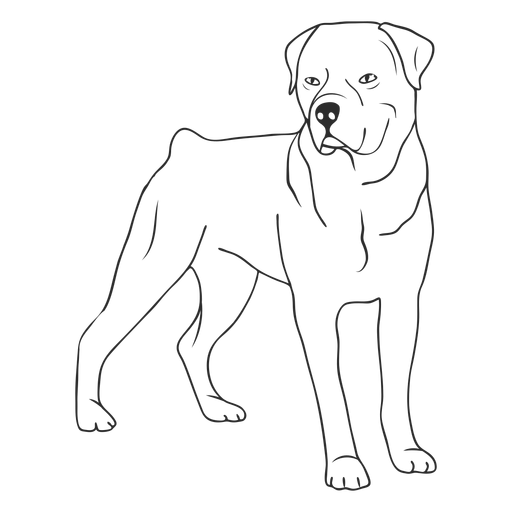 Rottweiler dog side stroke Transparent PNG