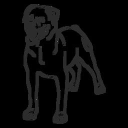Rottweiler dog stroke