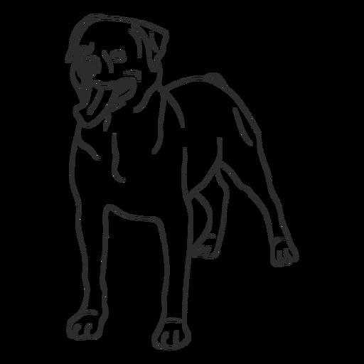 Rottweiler dog stroke Transparent PNG