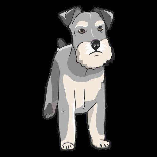 Schnauzer dog illustration