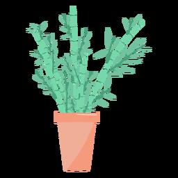 Ilustración hermosa planta de interior