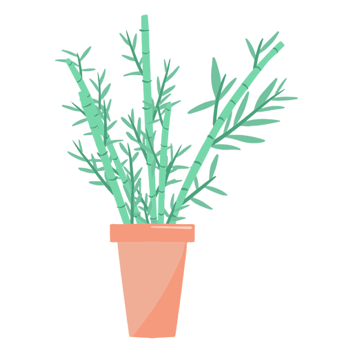 Beautiful houseplant illustration Transparent PNG