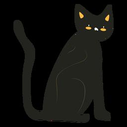 Black cat flat