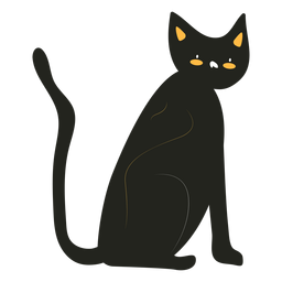 Gato negro plano
