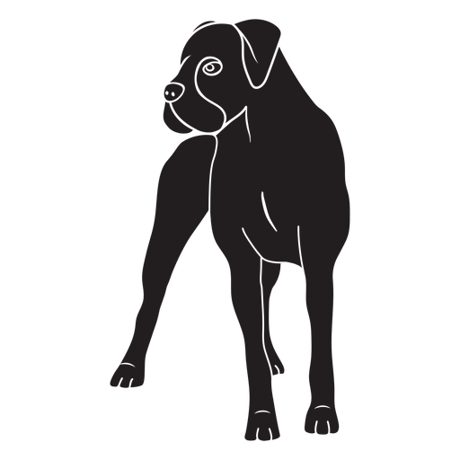 Perro boxer negro