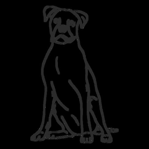 Boxer dog stroke