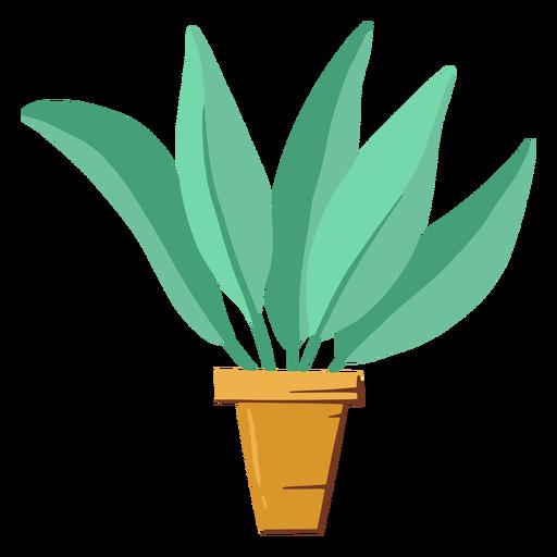 Cute houseplant illustration Transparent PNG