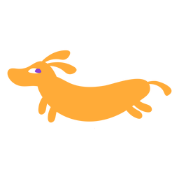 Cachorro bassê plana