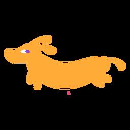 Dachshund dog flat