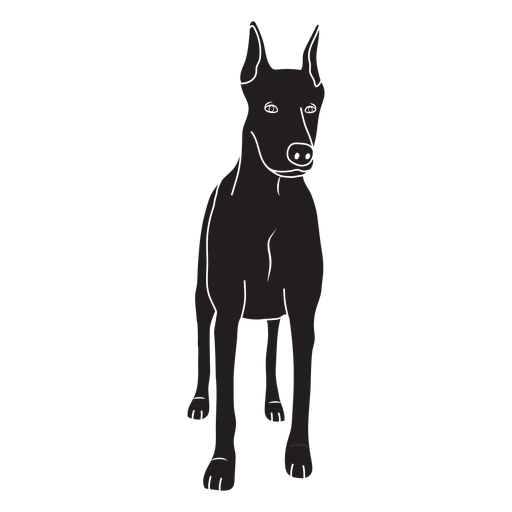 Perro Doberman negro