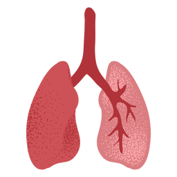 Pulmones con textura