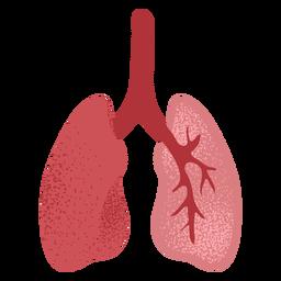 Pulmones texturizados