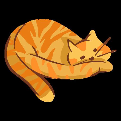 Ilustración de gato naranja